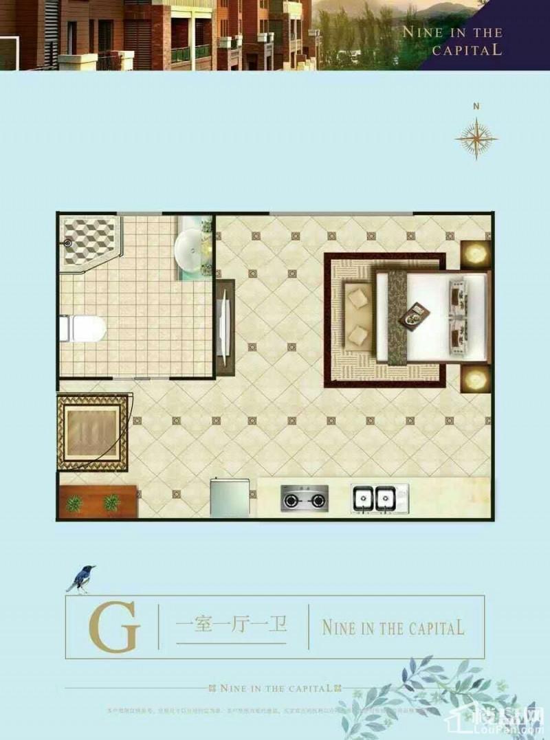 九里京城户型图